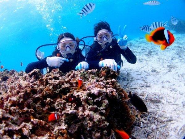 沖縄本島(青の洞窟エリア)体験ダイビング