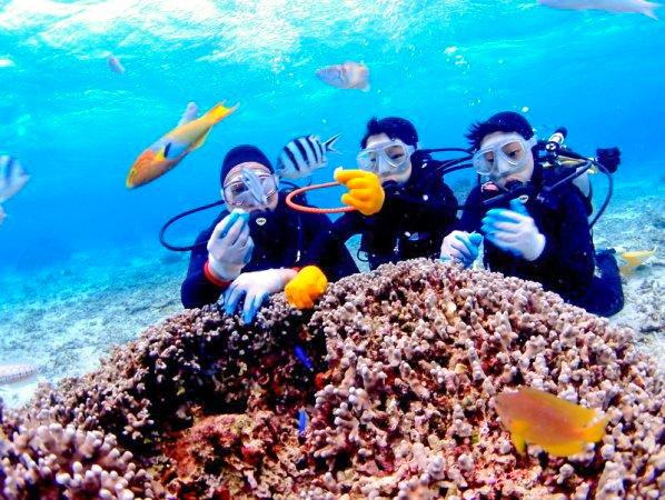 ボートで楽々エントリー! 青の洞窟シュノーケル&クマノミ体験ダイビングセット