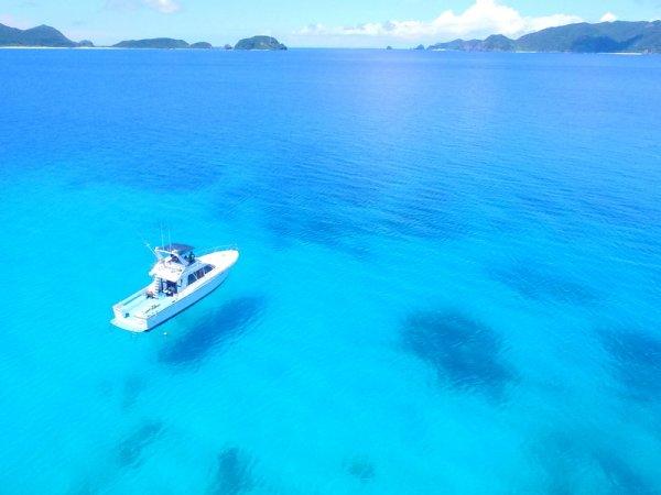 ボートでとっておきのポイントへ!ケラマブルーを体験ダイビングで満喫しよう!