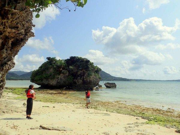 静かなビーチでは、ゆっくりとした時間が流れます