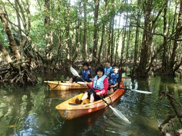 マングローブが広がる川をカヤックで探検できる「マングローブカヤック&リバートレッキング」コース