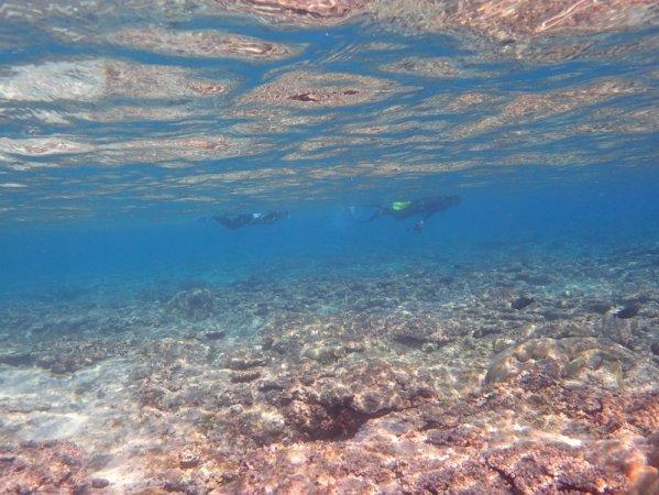 透明度抜群の伊良部島の海!