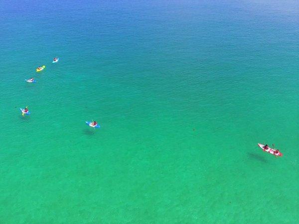 波が穏やかな日には海の底が見えるほどの透明度