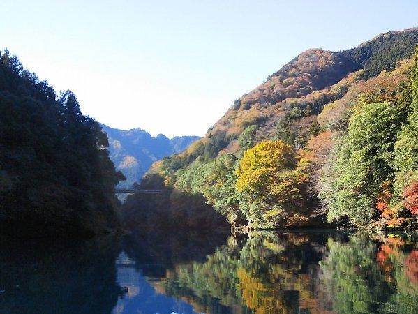 湖面に写る木々も美しい