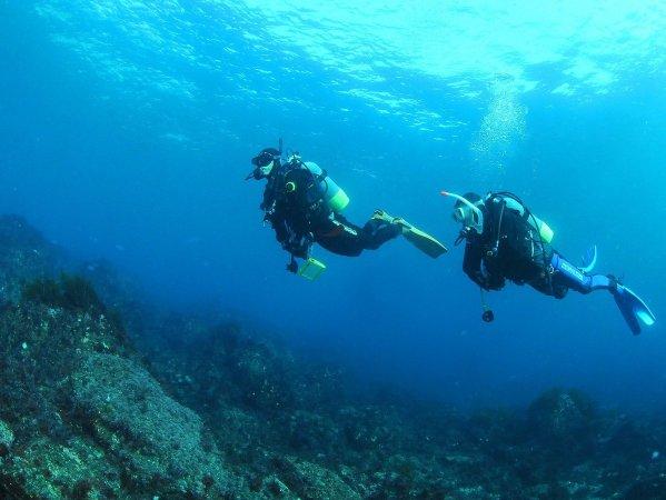 穏やかな海中の世界で、ゆったり浮遊体験
