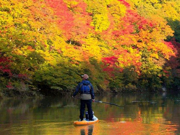 時間や季節によって、紅葉や朝もやなどの景色変化が見られるかも。