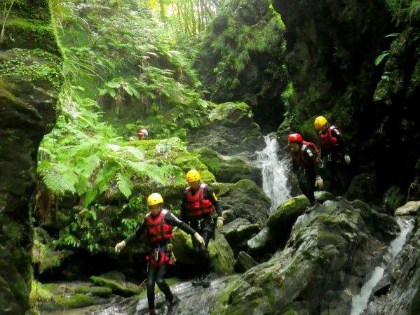 水と緑が美しい渓谷に出かけよう!