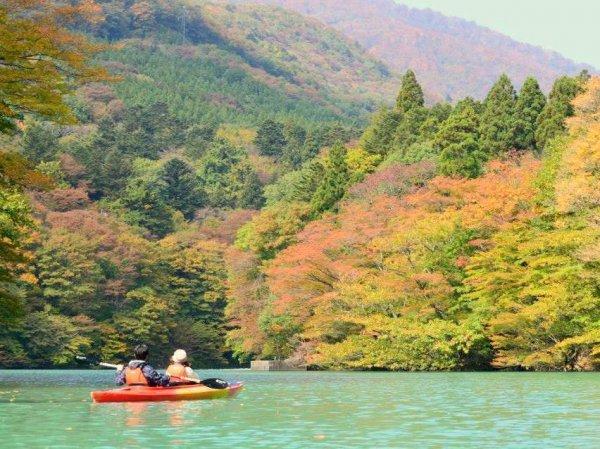 美しい季節変化も楽しめます。カヤックで紅葉狩りはいかがですか?