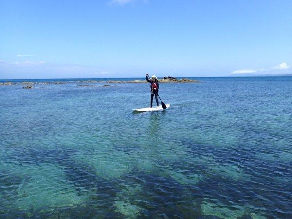 驚きの透明度を誇る館山の海