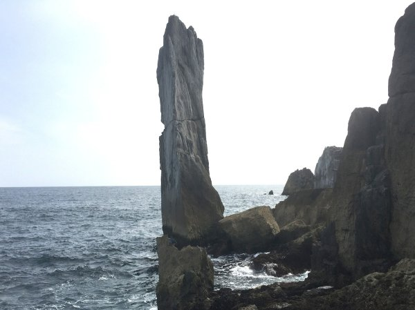 不要(2018/7/6 鈴木)