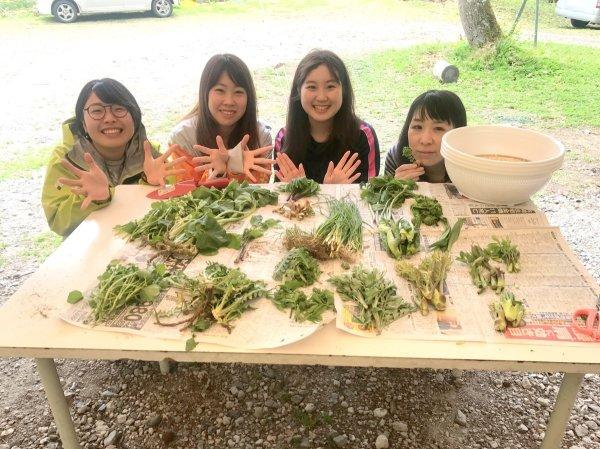 この日は20種類を超える大収穫!種類毎に並べてばっちり記念写真も撮りましょう。
