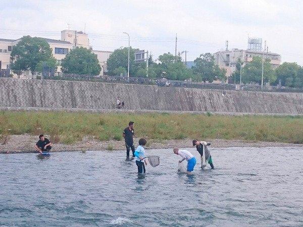 京都鴨川 自然観察・動物観察