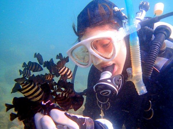 西伊豆(安良里) 体験ダイビング
