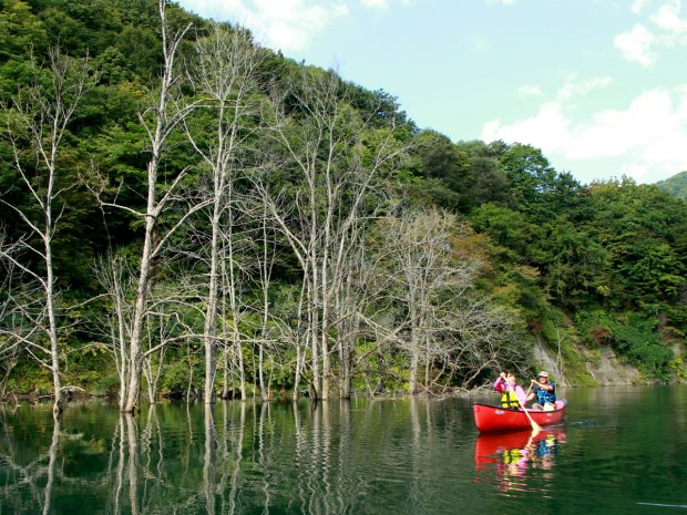 津軽白神湖 カヌー