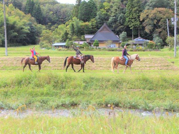京都府・京丹波 ホーストレッキング(乗馬)