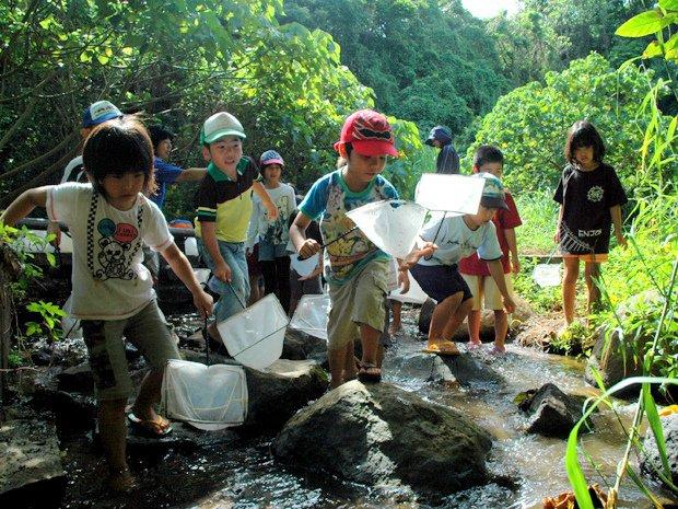 久米島 自然観察・動物観察
