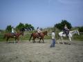 海岸に出る前には、丁寧なレッスンを受けられるから乗馬未経験者も安心!!
