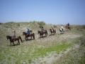 砂丘のアップダウンコースで九十九里の自然を満喫!