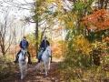 新緑や新雪、紅葉の美しい秋、夏でも涼しい樹海…四季折々の自然を満喫できます。