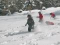 小学1年生から楽しめる!家族で雪遊びを満喫しよう。