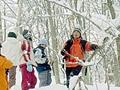 五感をフルに使って冬の自然を体感しましょう。何気ない風景の中にもいろいろなドラマが・・《ネイチャーハイキング》