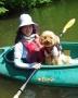 お客様が初めてでも安心してカヤック犬デビュー果たせます!ライフジャケットでわんちゃんが泳いでも安全