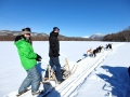 大雪山国立公園の美しい山並みを背景にに、十勝ならではの開放感抜群の広大な雪原を犬ぞりで駆け抜ける!