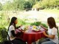 開放的な庭を眺めながらのランチ