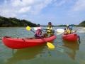 マングローブが育つ川辺でカヤック