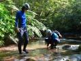 ジャングルの中を探検しよう!