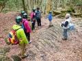 富士の樹海と洞窟探検を楽しむエコツアー!