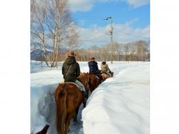 北海道屈斜路 ホーストレッキング(乗馬)