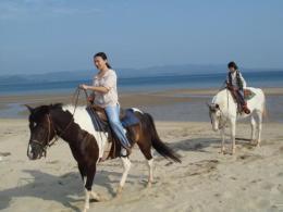 平戸海岸 ホーストレッキング(乗馬)