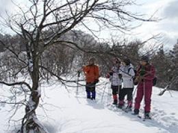 芦生・比良山系 スノーシューツアー
