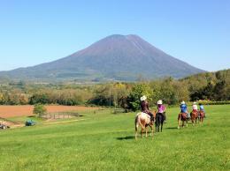 北海道ニセコ ホーストレッキング(乗馬)