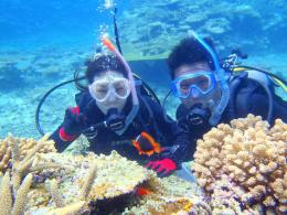 西表島 体験ダイビング