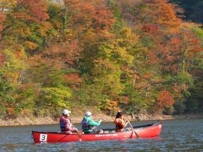 秋には山全体が紅葉を迎えます!普段とはちょっと違う紅葉狩りを体験してみて下さい!