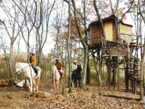 【初心者向け:トムソーヤコース】は、コース途中で『手作りツリーハウス』でコーヒーブレイク!馬旅気分が味わえます!