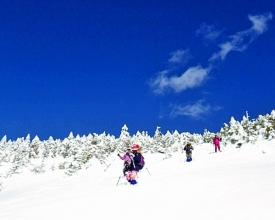白銀の世界へようこそ!ふわふわの雪と真っ青な空がお出迎え。