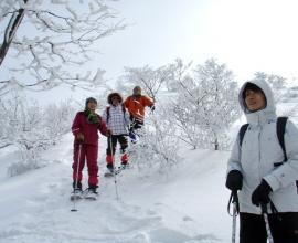 雪景色は何もかも新鮮な風景を見せてくれます、あなたは何を見ますか!