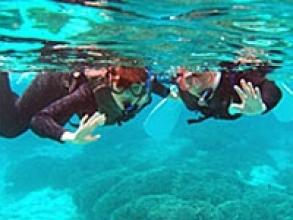 まさにパラダイス!白い砂地に密集するサンゴ礁でのシュノーケリング。
