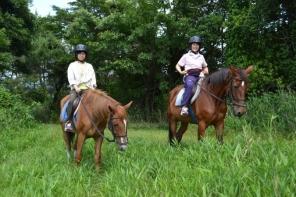 馬の背にゆられながら、四季折々の美しい自然をお楽しみいただけます。