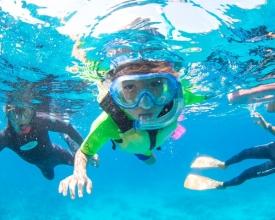 10歳から参加OK!気軽に参加できるシュノーケリングコースでも、ケラマの美しい海を楽しめます。