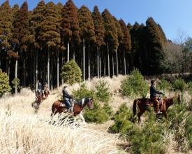 四季折々の変化や野生動物との出会いなど、最高のロケーションで乗馬を楽しむことができます。