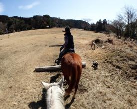 広々とした草原エリアが気持ちいい。