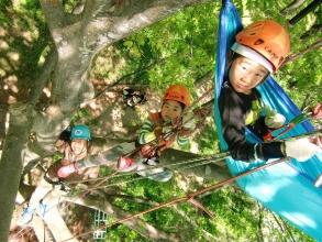 女性やお子様でも簡単に登ることができます。