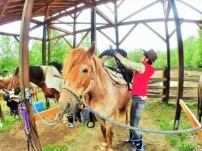 自分で馬装を体験できる!滅多にできない体験!