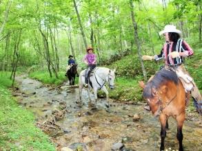 とてもめずらしい、馬で川を渡る経験
