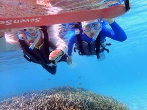 海の生きものはもちろん、池間島の成り立ちや自然をたっぷり観察しながら楽しむシュノーケリングツアーです!