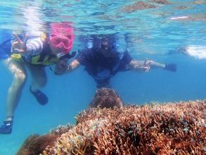 宮古島の海をおもいっきり楽しみたい!という海が大好きな方には「SUP&シュノーケリングコース」がオススメ!